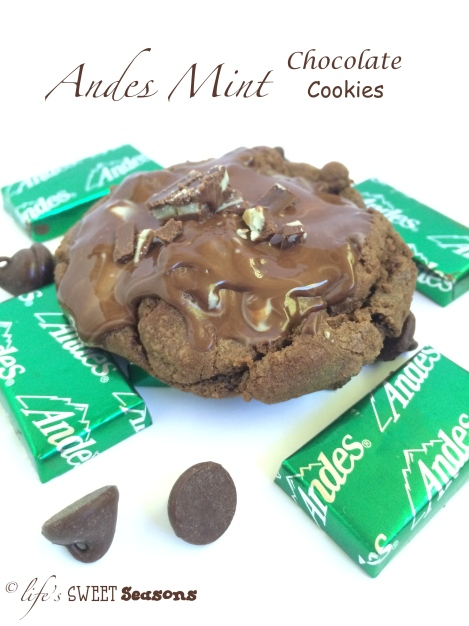 Andes Mint Chocolate Cookies 1