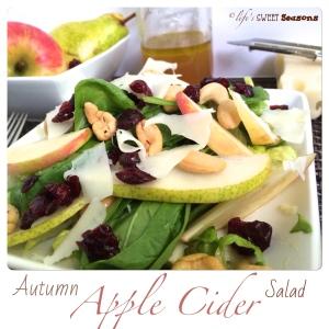 Autumn Apple Cider Salad 3