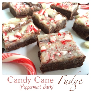 Candy Cane Fudge 4