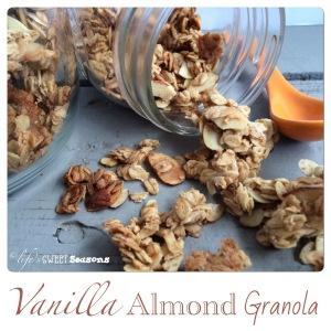 Vanilla Almond Granola 3