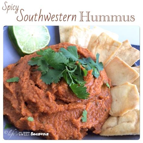 Spicy Southwestern Hummus 1