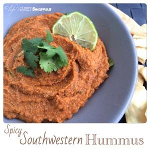 Spicy Southwestern Hummus 3